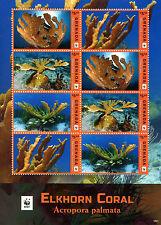 Grenada 2016 MNH Elkhorn Coral WWF 8v M/S Corals Marine Stamps