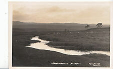 Cumbria Postcard - Westmoreland Landscape - Showing Sheep   MB1016