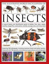 The Illustrated World Encyclopaedia of Insects, Martin Walters