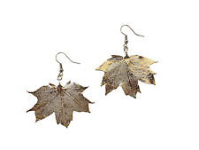 Sugar Maple Real Leaf Silver Dipped, Plated Earrings French Wire Dangle, Medium