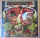 SPYRO GYRA Morning Dance LP