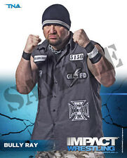 Official TNA Impact Wrestling - Bully Ray 8x10 P-9