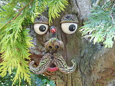 Large Tree Face garden ornament, statue sculpture.  Tree decoration