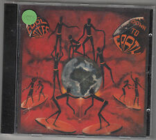 THE COOL NOTES - down to earth CD