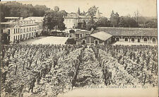 Pauillac - Chateau Lafite - BR - 1472 - France - Photo Postcard