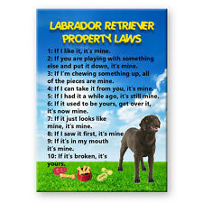CHOCOLATE LABRADOR Property Laws MAGNET Steel Cased DOG