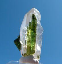 Clear Quartz Crystal With Multi Dark Green Tourmalines Mineral Specimen Gemstone