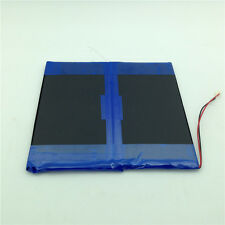 8000mAh Battery for Playtab 10 Student/SKYTEX SKYTAB SP970/Titan 9701 Tablet PC