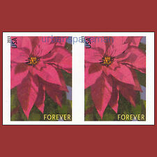 4816d Poinsettia Christmas Holiday 2013 Imperf Pair No Die Cuts