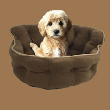 Pet Lounge, Dog Basket, Cat and Dog Bed, Day Bed, Deluxe Quilted Corduroy- Brown