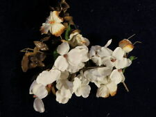 """Vintage Millinery Flower Collection 1 1/2' -2"""" Beige White Shabby H1212"""