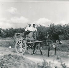 ENVIRONS RAGUSE c. 1950 - Paysans sur les Routes de Sicile  DIV 5014