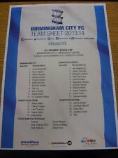 26/11/2013 Birmingham City u21 V Newcastle United u21 [u21 Premier League Cup] (