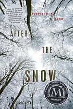 After the Snow Ser.: After the Snow 1 by S. D. Crockett (2013, Paperback)