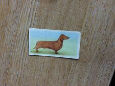 Vintage PRIORY TEA Trading Swap Card - I-SPY DOGS - No 4 1957 t2-1
