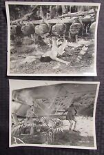1940's LOT of 2 JUNGLE GIRL Repubic Serial PROMO 8x10 Photos FN-