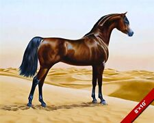 BEAUTIFUL BROWN ARABIAN HORSE IN HOT DESERT OIL PAINTING ART REAL CANVAS PRINT