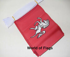 KENT FLAG BUNTING 9m 30 White Horse Fabric Party Flags English County Counties