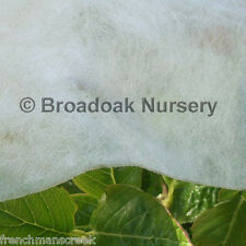 6m x 3m HORTICULTURAL FLEECE Garden Frost Protection