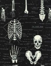 Timeless Treasures Glow in the Dark Skeleton Cotton Fabric Print by Yard D569.18