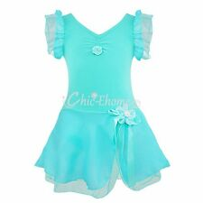 Kids Girls Gymnastics Ballet Dance Dress Princess Dress Leotard Fancy Costume