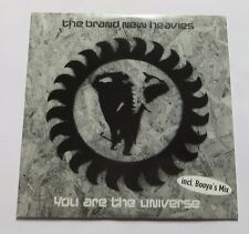 The Brand New Heavies – You Are The Universe CD MCD Papersleeve Booyas Mix