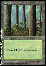 Forest Version 1 // NM // APAC Lands // engl. // Magic the Gathering