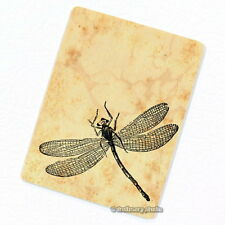 Dragonfly Deco Magnet, Decorative Fridge Refrigerator Décor Garden Insect Gift