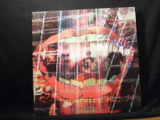 Animal Collective-Centipede Hz 2 LPS
