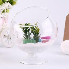 Home Deco Hydroponic Aquarium Fish Glass Vase Tank Plant Container Terrarium XY