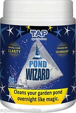 TAP PROFESSIONAL POND WIZARD CLEANING TREATMENT CLEAR HEALTHY FISH POND WATER