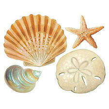 WALLIES SHELLS wall stickers 24 decals bathroom DECORATION seashells ocean beach