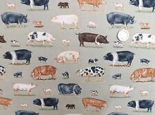 Farm Animal Pigs fabric fat quarter 50 x 56 cm Makower MK1488 100% Cotton