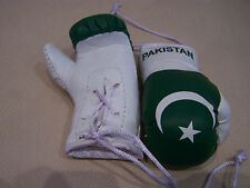 Pakistan Flag Mini Boxing Gloves Pair Car Hanging Rearview Mirror Accessory
