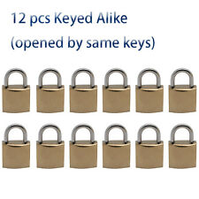 12 Iron locks in Golden plated, Keyed Alike, all open by same one key