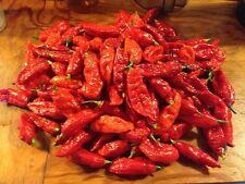 100 Ghost Pepper Seeds