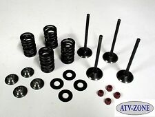 Stainless Steel Intake and Exhaust Valves with Spring Kit Suzuki LT Z400 DR Z400