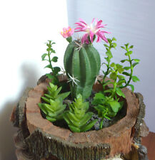 Mini Artificial Plants Set of 10 Cactus Mini Stones Grass