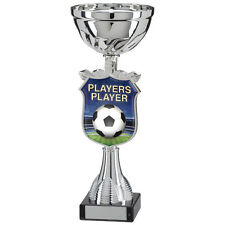 Football - Players Player Titan Cup,Trophy,Award,250mm,FREE Engraving (TQ15112C)