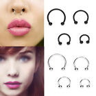 2 X Stylish Sexy Medical Steel Horseshoe Bar Lip Nose Septum Ear Ring Xmas Gift