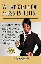 What Kind of Mess Is This? by Tameka Lcsw Ladac Lancaster (2011, Paperback)