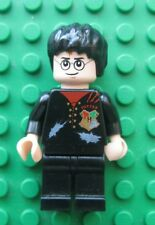 Lego HARRY POTTER Hungarian Horntail Minifigure set 4767 Tattered Shirt