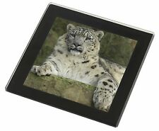 Beautiful Snow Leopard Black Rim Glass Coaster Animal Breed Gift, AT-47GC