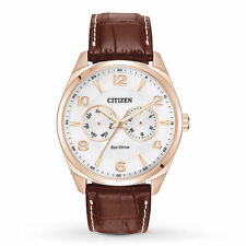Mens Citizen Eco-Drive Brown Leather Rose Case Day Date Dress Watch AO9023-01A