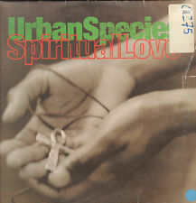 URBAN SPECIES - Spiritual Love - Talkin' Loud