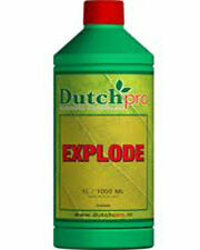 DUTCH PRO EXPLODE 100ml - FLOWERING BOOST - !QUICK DELIVERY! Decanted