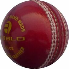 R-Max Diablo Leather Cricket Ball (BELCO659)