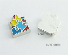 LOT 10 pcs autism floating charms for living locket free shipping FC154