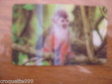 2014 Carte animée CORA Collector Animaux Animals SINGE ECUREUIL 26/44