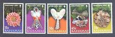 BAHAMAS 2007, Butterflies, Christmas, set of 5, MNH** (91)